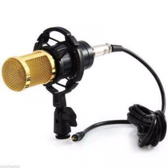 ไมค์อัดเสียง Pro Condenser Microphone BM800 พร้อมอุปกรณ์เสริม(Black)