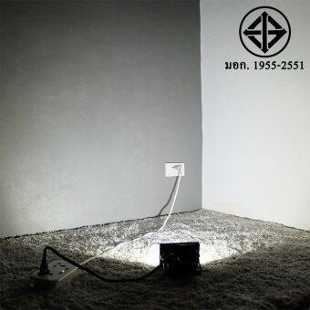 สปอตไลท์ 10W เสียบปลั้ก ใช้ได้เลย (220 V.)(แสง:ขาว)