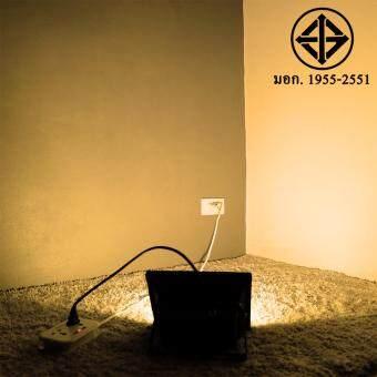สปอตไลท์ 30W เสียบปลั้ก ใช้ได้เลย (220 V.)(แสงเหลืองวอมไวท์)