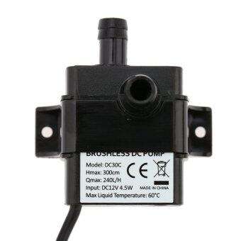 Anself Ultra-quiet Mini DC12V 4.5W Micro Brushless Water Oil Pump (Intl)