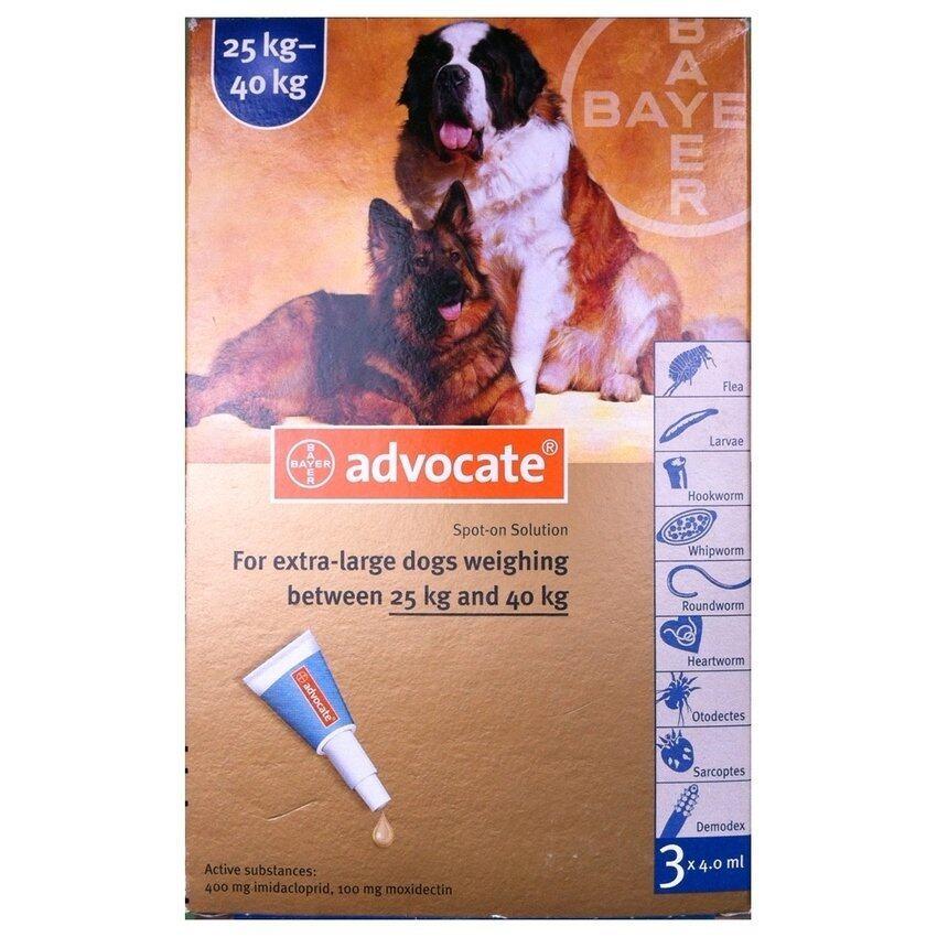 Bayer Advocate สำหรับสุนัข น้ำหนัก 25-40 กก X 3 หลอด (1กล่อง) สำหรับกำจัดเห็บหมัด (04909-3)