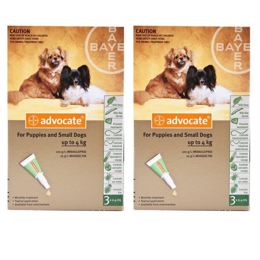 Bayer Advocate สุนัข น้อยกว่า 4 กก X 6 หลอด (2กล่อง) สำหรับกำจัดเห็บหมัด (04901-6) ...