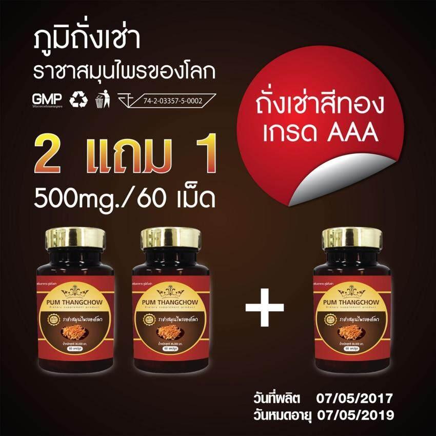 (ซื้อ 2 แถม 1 ) ภูมิถั่งเช่า อาหารเสริม ถั่งเช่า ถั่งเช่าแท้ ถั่งเช่าสีทอง เห็ดถั่งเช่าสีทอง Pumthangchow อาหารเสริมผู้ชาย 500 มก. 1 กระปุกมี 60 แคปซูล ...
