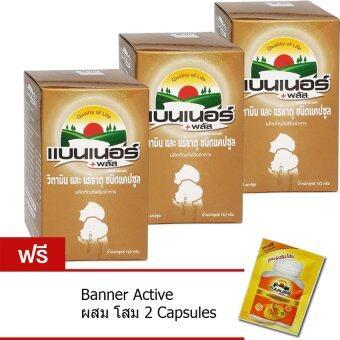 Banner Plus Vitamin & Minerals 100เม็ด (3ขวด) แบนเนอร์ พลัส