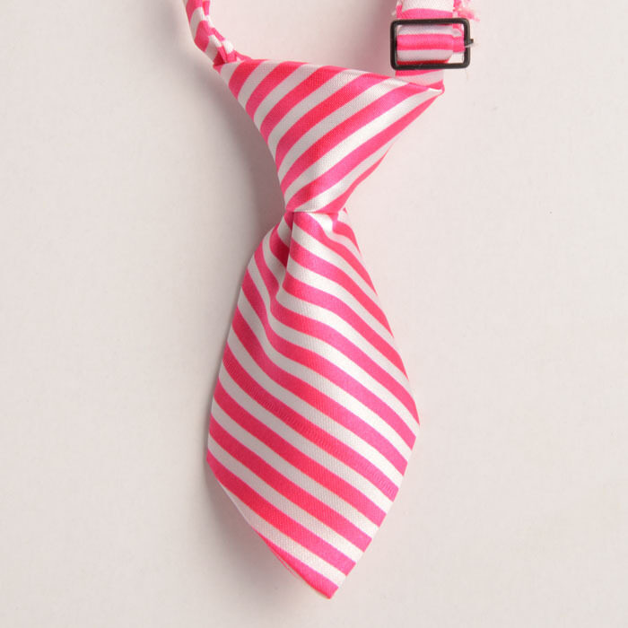Fancytoy Adjustable Grooming Necktie Puppy Kitten Adorable Bow Tie For Dog Cat Pet A5 -  ...
