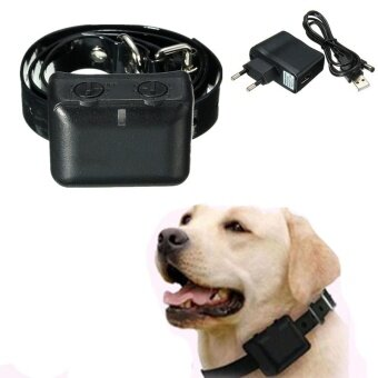 Stop Electric Hot New Safe Set No Barking Anti Bark Dog Training Collar - intl
