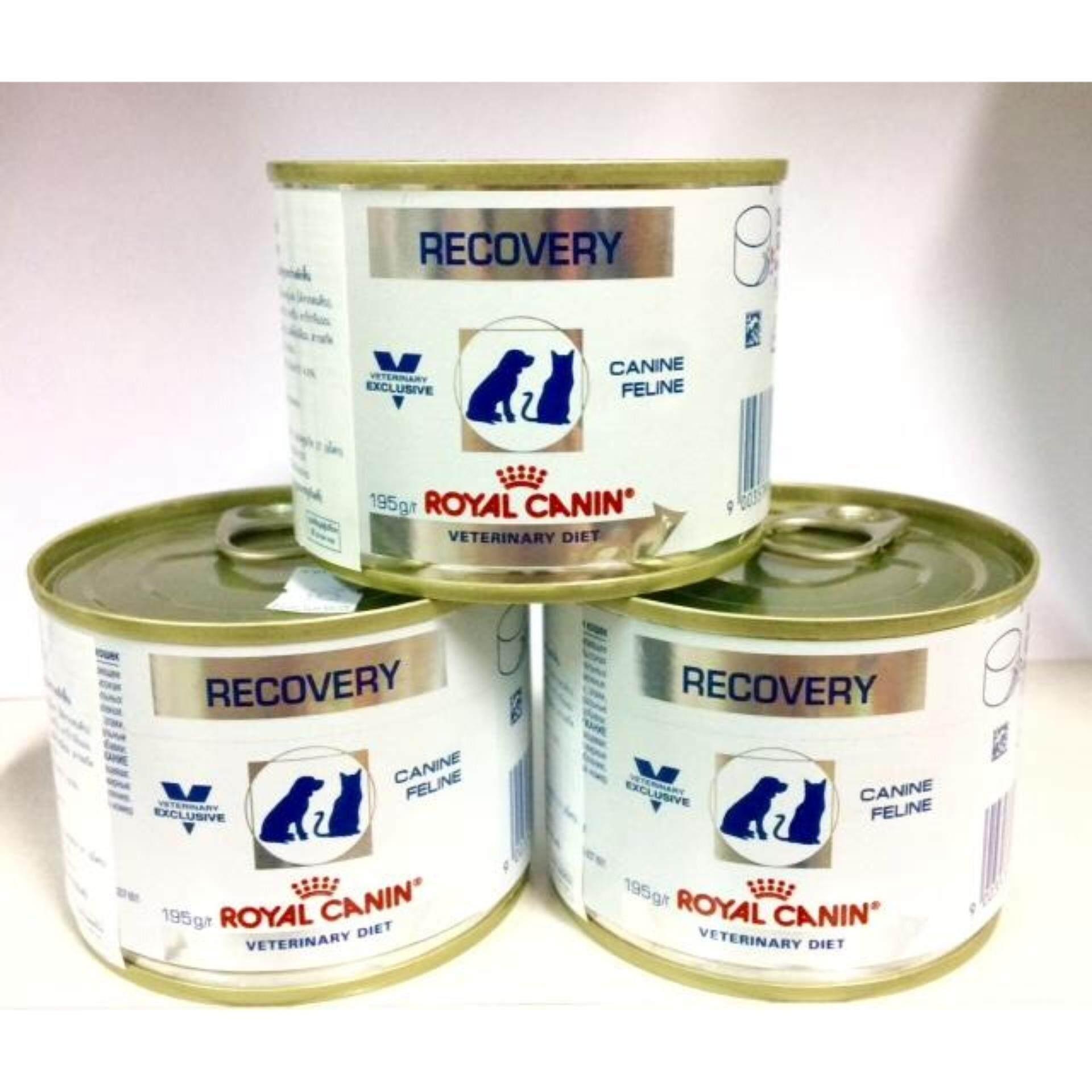 Recovery canine feline 195 g 3 canอาหารเปียกสุนัขแมวป่วยพักฟื้น3กระป๋อง