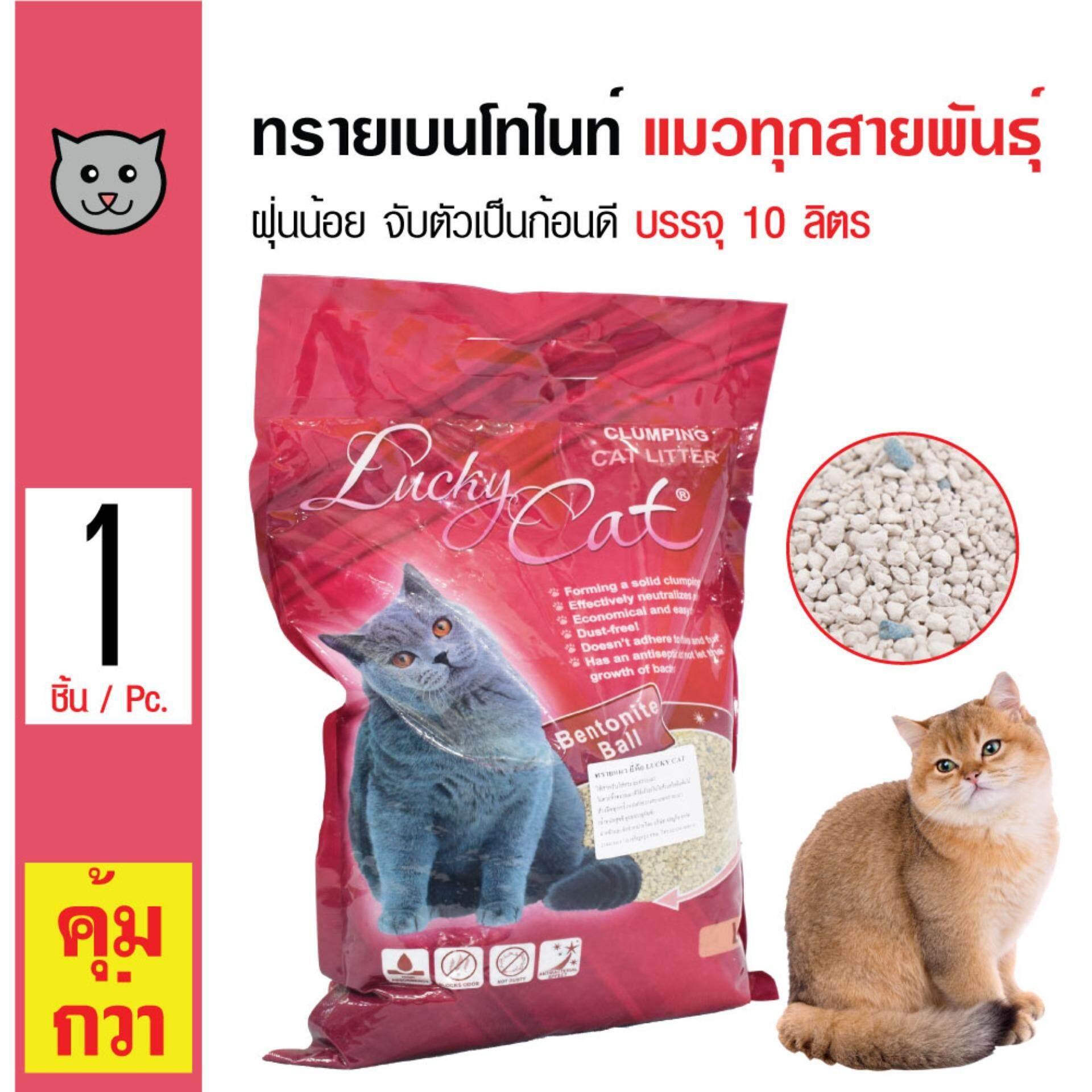 Lucky Cat Litter ทรายแมว ทรายแมวเบนโทไนท์ กลิ่นลาเวนเดอร์ ฝุ่นน้อย จับตัวเป็นก้อน สำหรับแมวทุกวัย (10 ลิตร/ ถุง)
