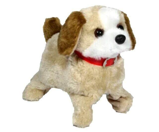 สุนัข ตีลังกา หมาตีลังกา เห่าได้ เดินได้ ตีลังกาได้ เสริมสร้างทักษะการเรียนรู้ สนุกสนานเพลิดเพลิน.