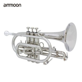 ammoon Professional Bb Flat Cornet Brass Instrument with Carrying Case Gloves Cleaning Cloth Grease Brushes ...