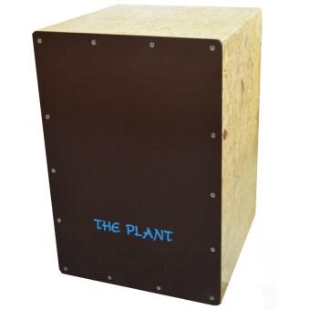 The Plant รุ่น Cajon (Oak)