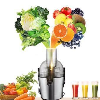 Electric Juice Extractor เครื่องคั้นน้ำผักผลไม้แบบแยกกากคุณภาพสูง