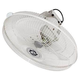 Sonar พัดลมไฟฟ้าอุตสาหกรรมแบบติดเพดานขนาด 20\ รุ่น EF-E225 สี Ivory