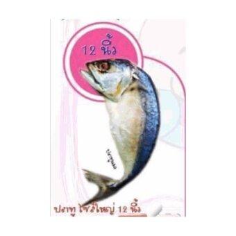 ปลาทูแคทนิป ปลาทูของเล่นแมวขนาดใหญ่ 12 นิ้ว