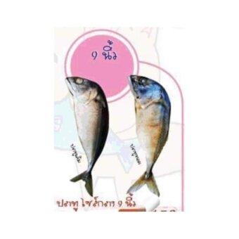 ต้องการขาย ปลาทูแคทนิป ปลาทูของเล่นแมวขนาดกลาง 9 นิ้ว ปลาทูเค็ม