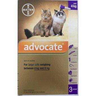 advocate (แอดโวเคท) แมวโต กำจัดหมัด ไรในหู และปรสิตครบวงจร สิ้นอายุ 09/2019 (3 หลอด/กล่อง)