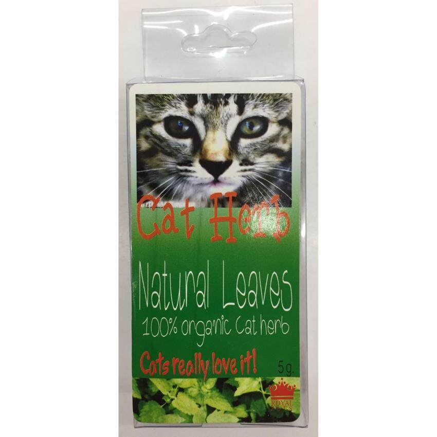 Cat Herb Natural Catnip หญ้าแมว 5g ( 2 units )