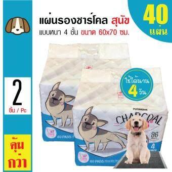 Charcoal Pads แผ่นรองซับสัตว์เลี้ยง แผ่นรองฉี่สุนัขสำหรับสุนัขทุกสายพันธุ์ ขนาด 60x70 ซม. (40 แผ่น/ แพ็ค) x 2 แพ็ค