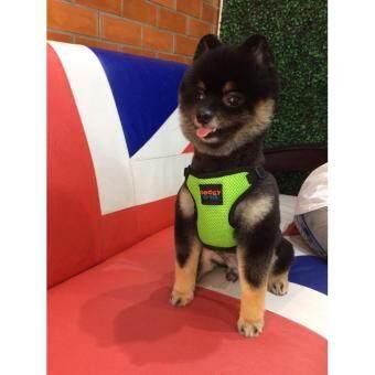 """สายจูง doggy style ชุดรัดอก สำหรับสุนัข สีดำ รุ่นsport size L รอบอก 20""""-26"""" - 3"""