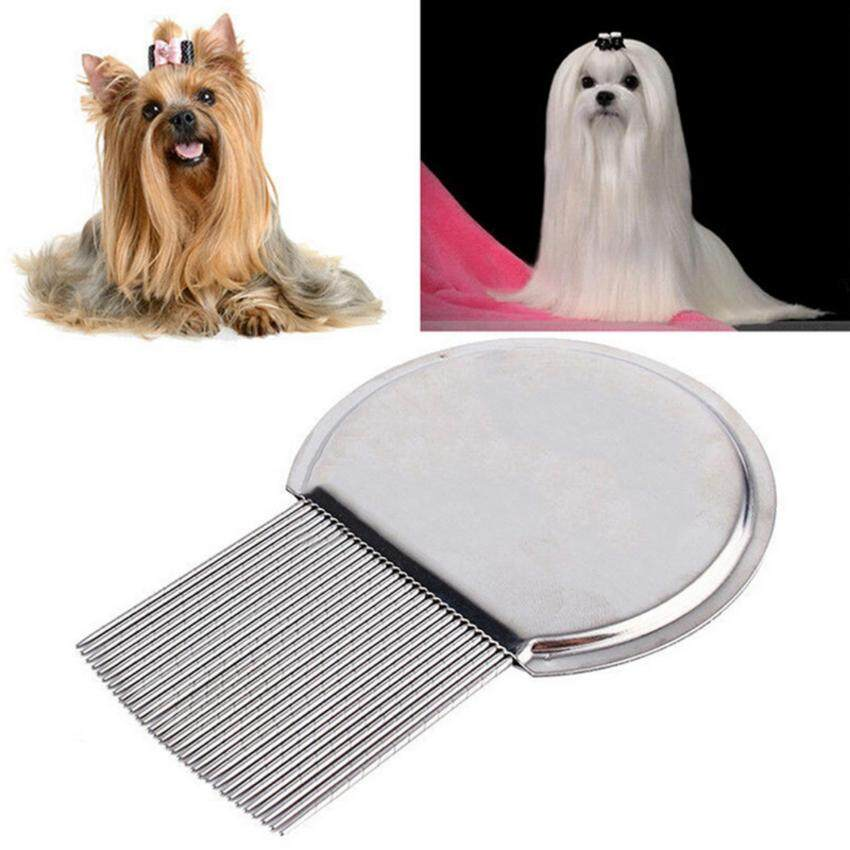 Fashion Pets Cat Dog Health Combs for Head Lice Flea Eggs Detection - intl