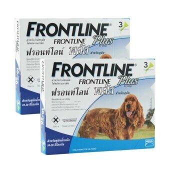 เปรียบเทียบราคา Frontline Plus ยาหยอดกำจัดเห็บ หมัด สุนัข น้ำหนัก 10-20 kg บรรจุ 2 กล่อง (กล่องละ 3 หลอด)
