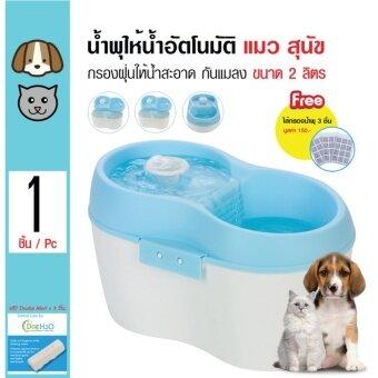 H2O น้ำพุให้น้ำอัตโนมัติ ระบบน้ำเวียน กรองฝุ่นและแมลง สำหรับสุนัขและแมว ขนาด 2 ลิตร แถมฟรี! Dental Care 3 ชิ้น/ แผ่นกรอง 3 ชิ้น