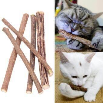 Matatabi Catnip ก้านไม้ตำแยแมว ขนมแมว ของเล่นแมว เพื่อคลายเคลียดเพลิดเพลิน ขนาดเล็ก สำหรับแมวทุกสายพันธุ์ (5 ชิ้น/ แพ็ค) รูบที่ 3