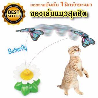 ประกาศขาย ของเล่นแมว ของเล่นน้องแมว ฝึกทักษะ จับผีเสื้อน้อย ผีเสื้อบินอัตโนมัต New ของเล่นสัตว์เลี้ยงสุดฮิต !!!