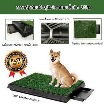 ต้องการขาย ถาดรองฉี่สุนัข ถาดรองซับ ห้องน้ำสุนัข ถาดหญ้าเทียมฝึกสุนัขขับถ่ายแบบลิ้นชัก รุ่น PP-2025D (สีเขียว)