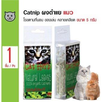 Royal Pets Catnip ขนมแมว ตำแยแมว กัญชาแมว ใช้โรยบนของเล่นหรืออาหาร สำหรับแมว ขนาด 5 กรัม