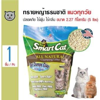 เสนอราคา SmartCat ทรายแมวหญ้าธรรมชาติ ปลอดภัย ไร้ฝุ่น ไร้กลิ่น สำหรับแมวทุกวัย ขนาด 2.27 กิโลกรัม
