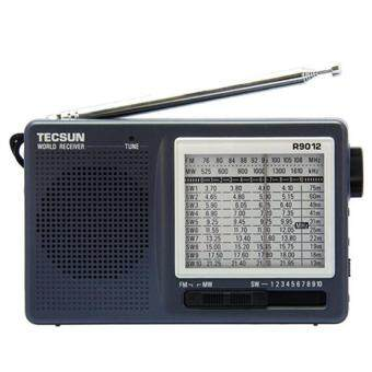 High Sensitivity TECSUN R-9012 12 Band FM / AM / SW Radio ReceiverGray - intl
