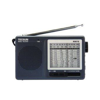 TECSUN R-9012 FM,MW,SW 12 BAND RADIO RECEIVER Portable Mini FMRadio With Built-In Speaker - intl