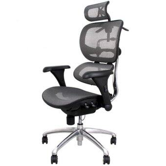 เก้าอี้สำนักงานเพื่อสุขภาพ เออร์โกเทรน รุ่น บียอร์นซิกเนเจอร์-01GMMสีเทา