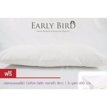 Early Bird Bedding - หมอนบอดี้รุ่นมาตรฐานโรงแรม