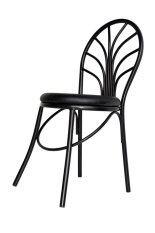 Inter Steel เก้าอี้เหล็ก มีพนักพิง รุ่น CH555 โครงดำ - เบาะสีดำ