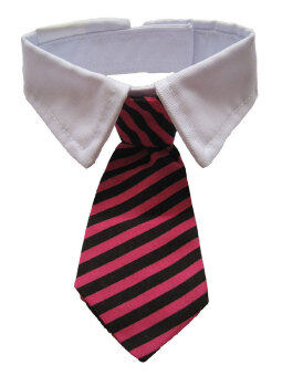 niceEshop Dog Cat Pet Stripe Bow Tie Neck Tie with White Collar(Red Black Stripes)