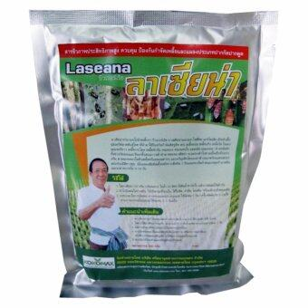 KOKOMAX สินค้าการเกษตร เชื้อราบิวเวอร์เรีย เมธาไรเซียม ใช้กำจัดเพลี้ย ศัตรูพืช