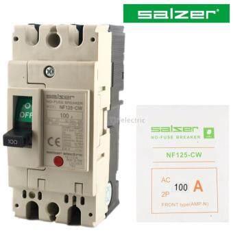 Salzer สวิทซ์ตัดตอนอัตโนมัติ MCCB (รุ่น NF-125CW) ชนิด 2P 100A 220V No Fuse Breaker