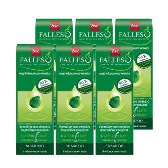BSC Falless ชุดแชมพู ฟอลเลส สูตรผมแข็งแรงสุขภาพดี (6ขวด)