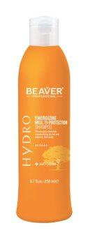 Harga Beaver A Multi-Protection Shampoo 258 ml.