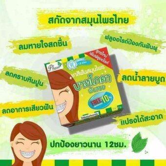 Jte ยาสีฟันสมุนไพร ฟันสวย โภคา Phoca