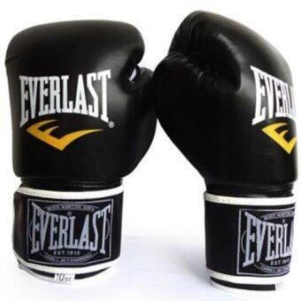Harga EVERLAST Professional Boxing Muay Thai Training Gloves 12oz (Black) - intl