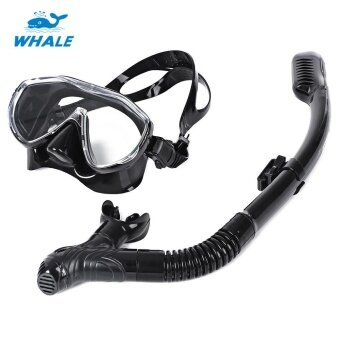 WHALE Professional Diving Silicone Mask Snorkel Glasses Set - intl