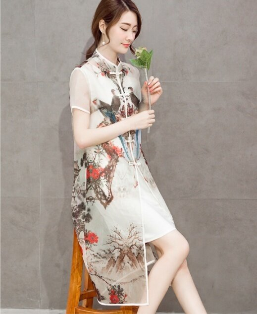 (High quality - fast delivery) new women's chiffon dress, bottoming shirt, self-cultivation, loose was thin - intl