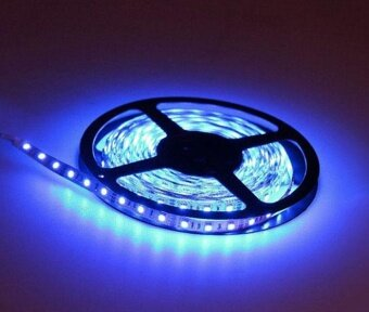5M 3528 Waterproof LED Flexible Light Strip 12V with 300 SMD LED Blue - intl