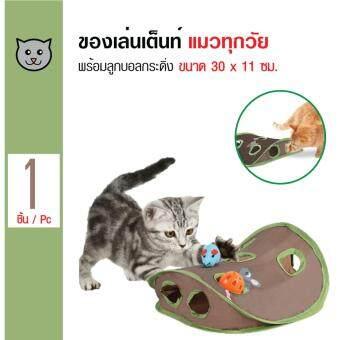 Cat Toy ของเล่นเต็นท์แมว พร้อมลูกบอลกระดิ่ง สำหรับแมวทุกวัย ขนาด 30x11 ซม.