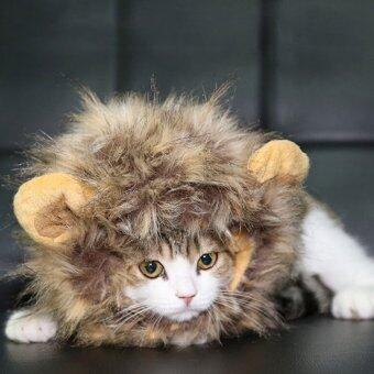 อยากขาย Thaivasion หมวกวิกแผงคอสิงโตและหูสำหรับสัตว์เลี้ยง
